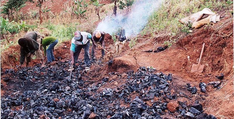 deforestation as a result of charcoal burning in kenya